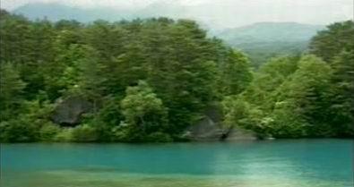 pantai pulau yang hijau